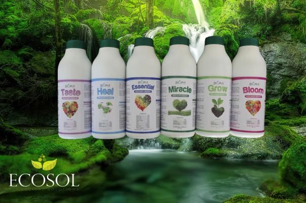bioma ecosol